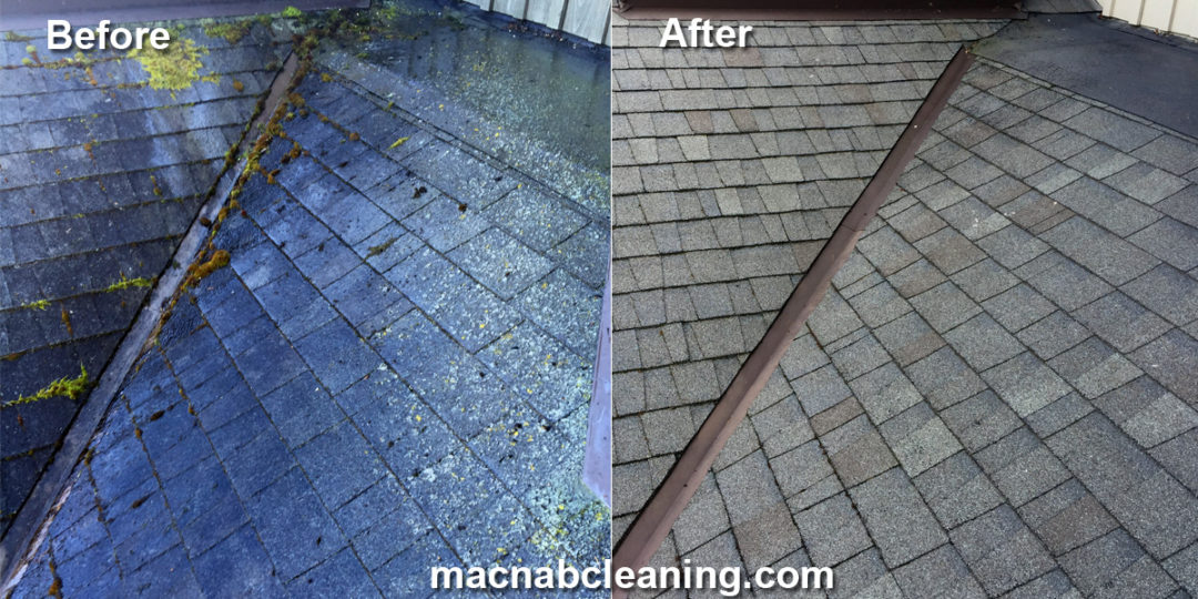 Roof Algae Cleaning Sidney BC