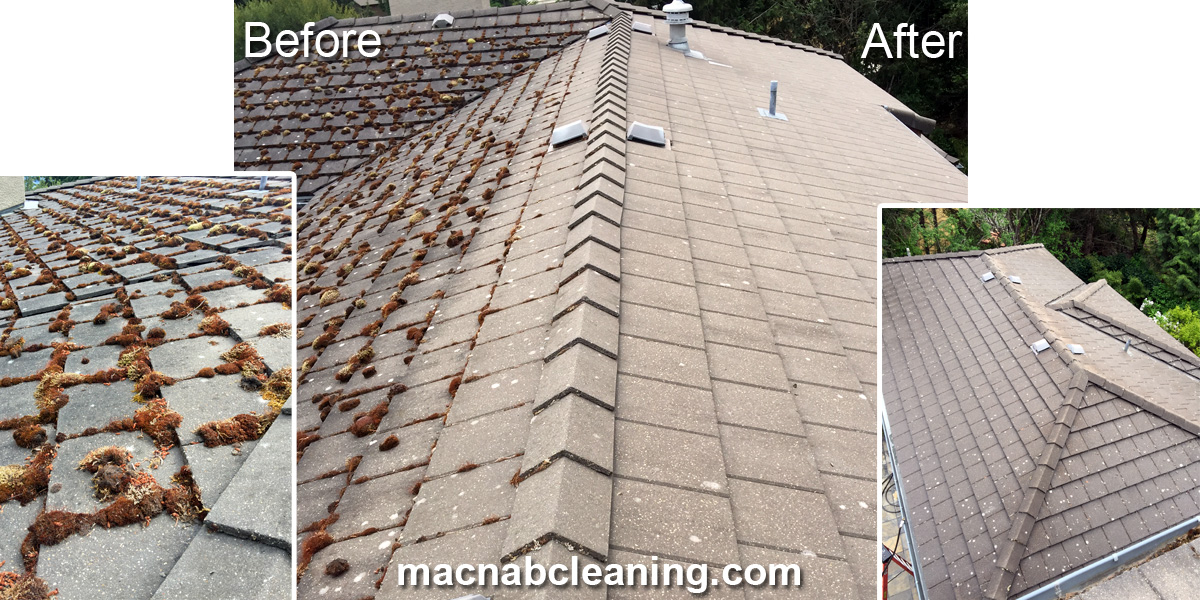 concrete tile roof demoss before and after macnab cleaning