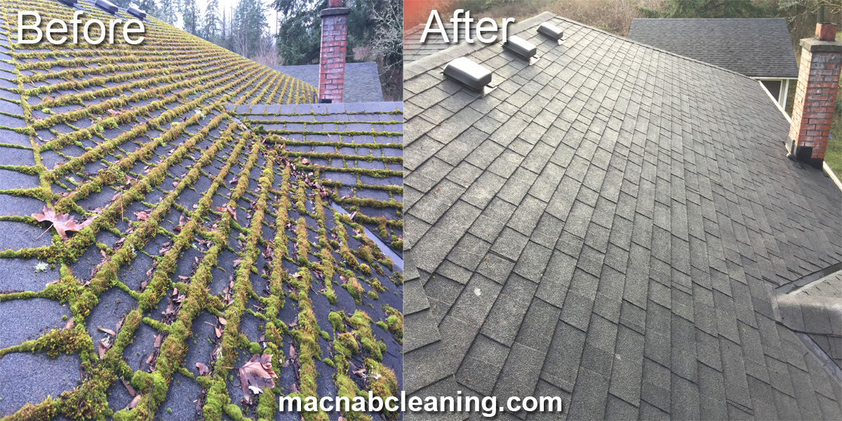 demossing roof before after macnab exterior cleaning