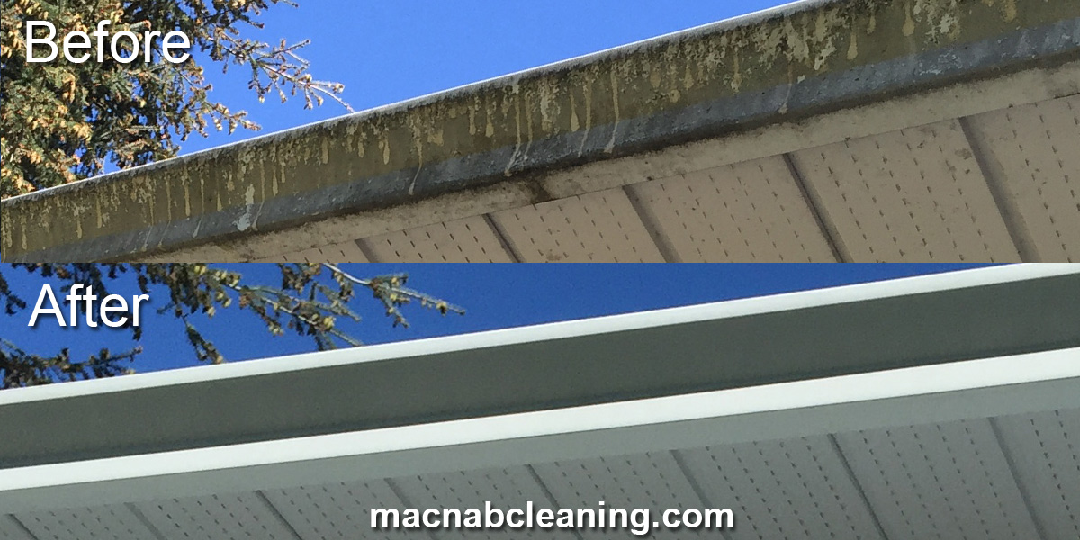 dirty and clean gutters before and after macnab exterior cleaning