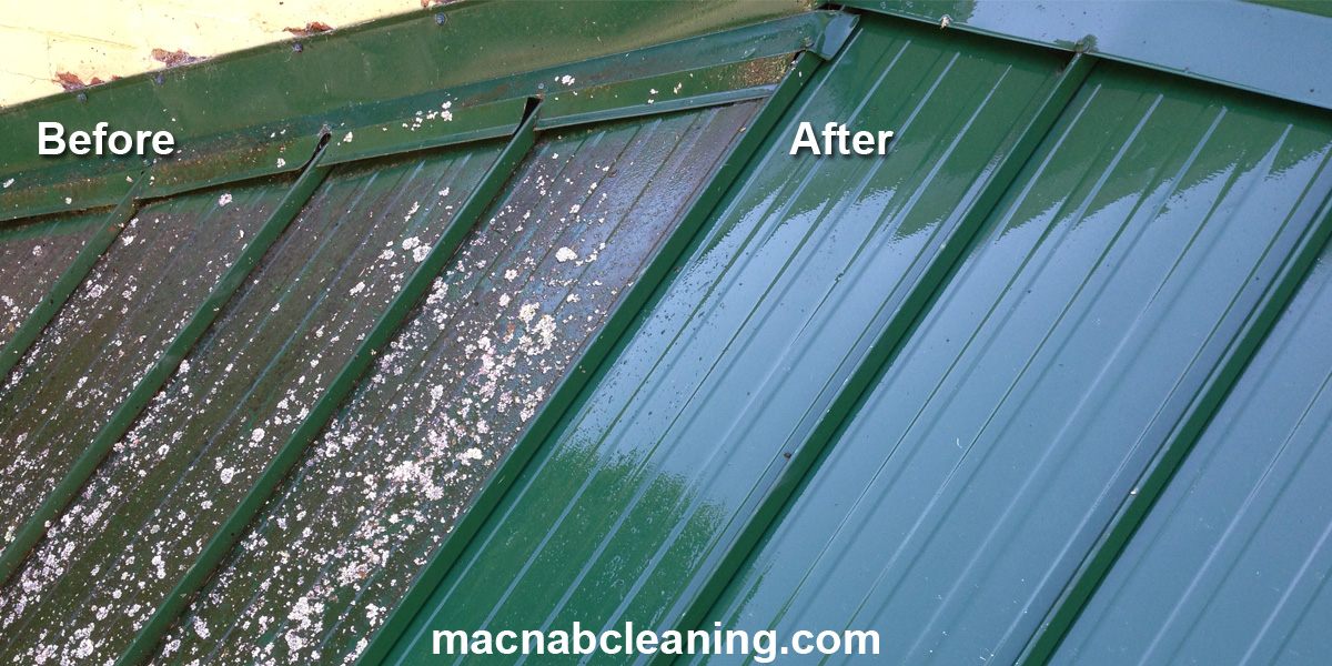 Metal roof before and after macnab exterior cleaning
