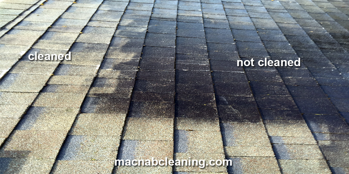 black roof stain before and after macnab exterior cleaning