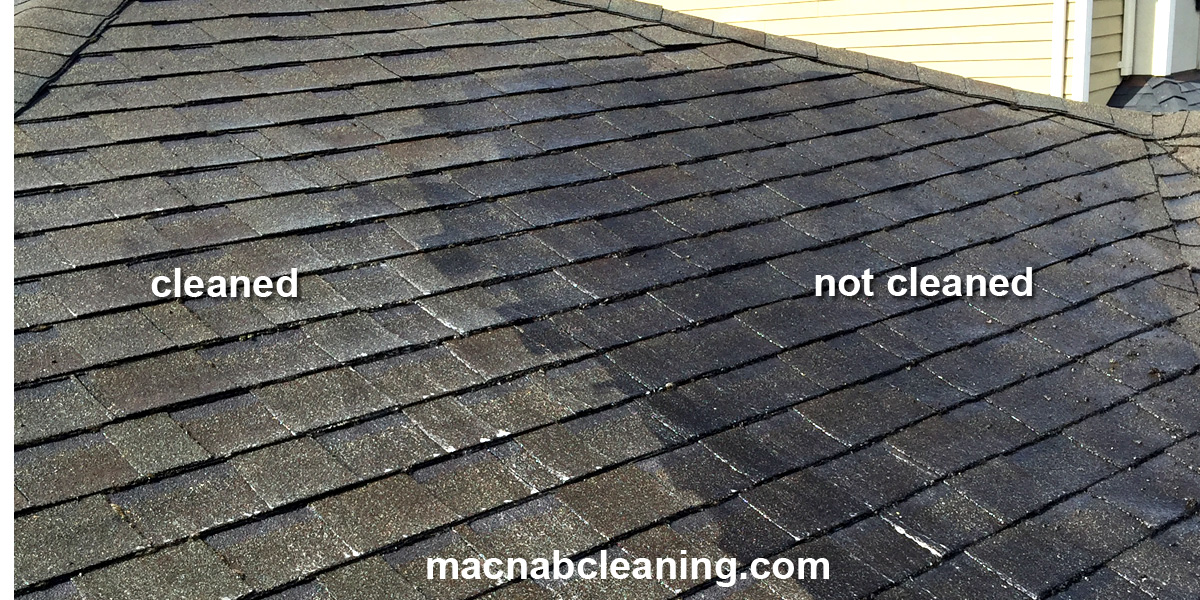 black roof stains before and after removal macnab exterior cleaning