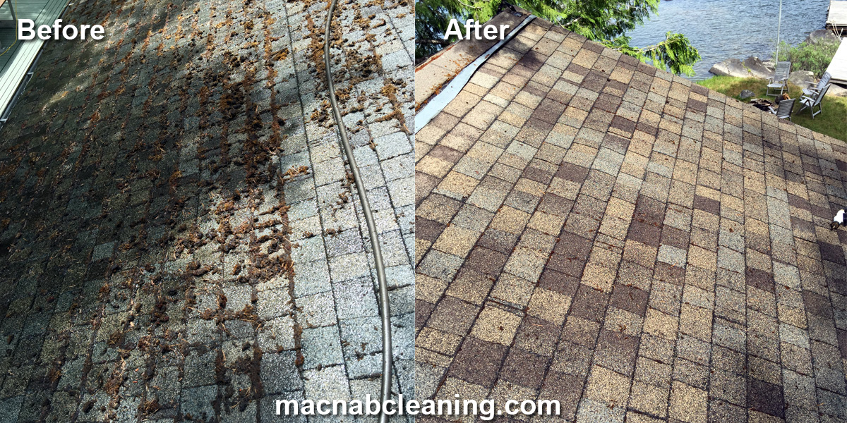 Shawnigan Cottage roof demoss before and after macnab exterior cleaning