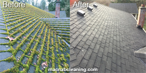Before And After Gallery Macnab Exterior Cleaning & Demossing