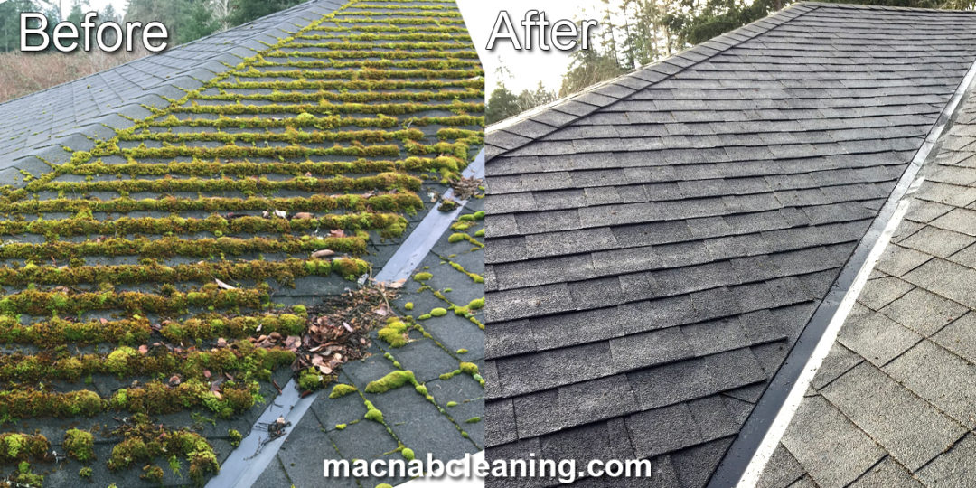 Roof Moss Removal North Saanich