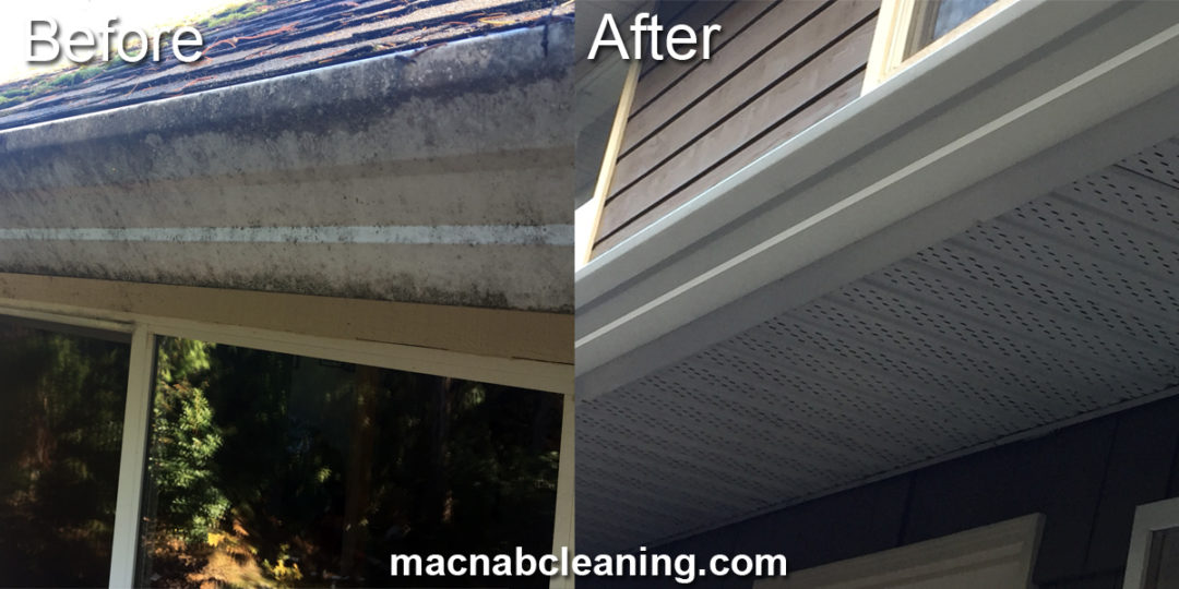 Gutter Cleaning Cobble Hill BC