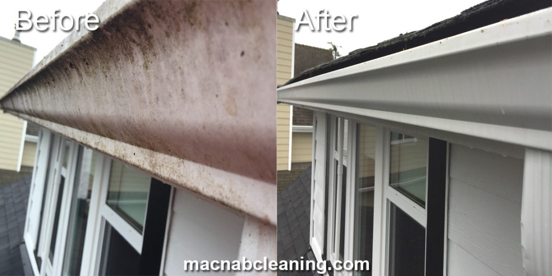 Gutter Cleaning Sidney BC