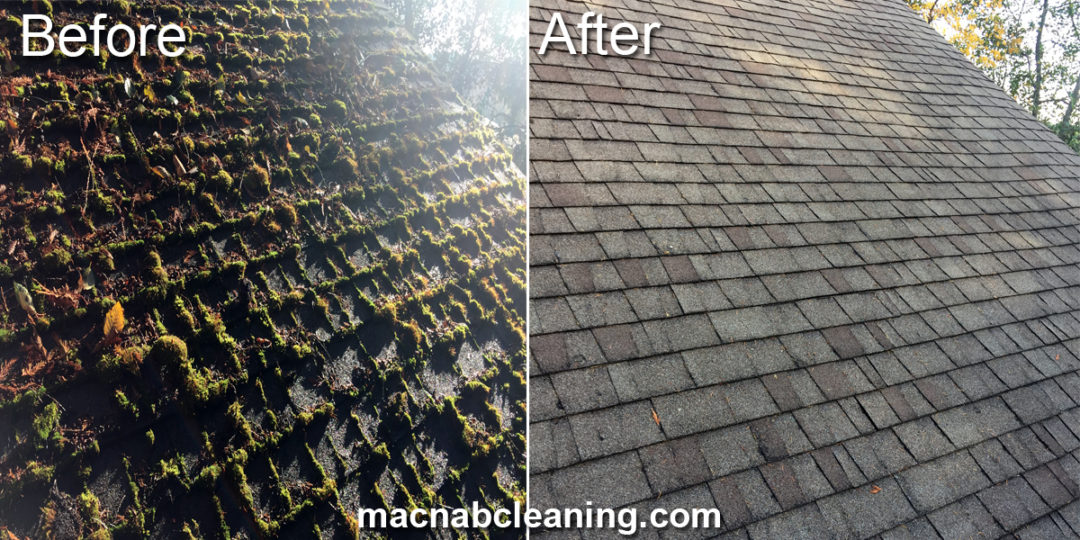 Cowichan Valley Moss Removal MacNab Cleaning