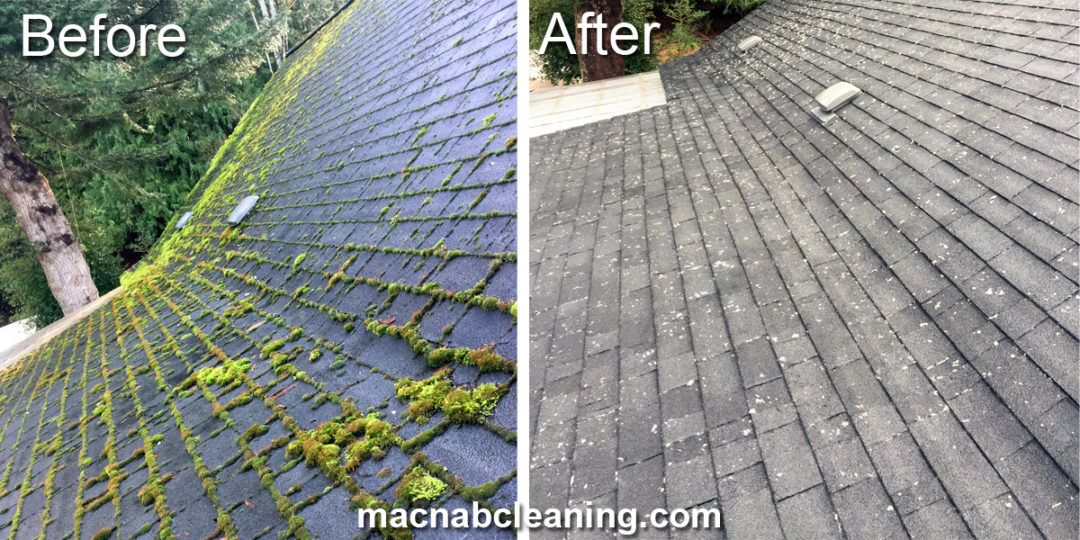 Roof Cleaning and Treatment Shawnigan Lake