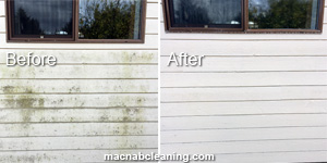 Siding & House Washing