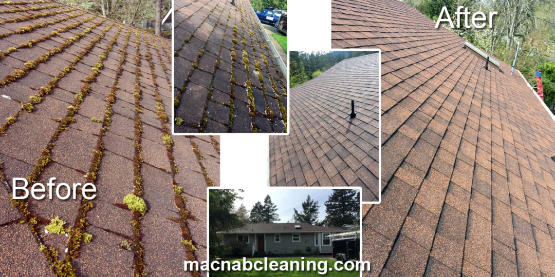 BrentWood Bay Roof Cleaning Demoss
