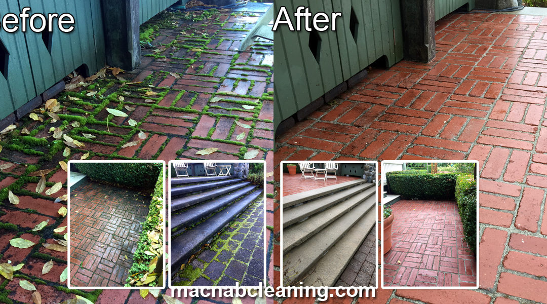 Power Washing Archives | MacNab Exterior Cleaning & Demossing